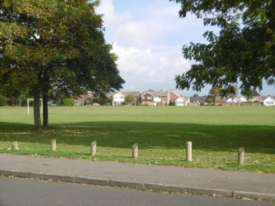 Playing Field View
