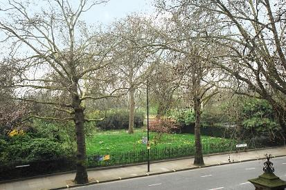View of Hyde Park