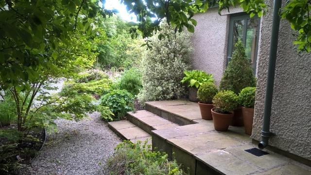 Garden continued