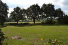 Formal Gardens Back