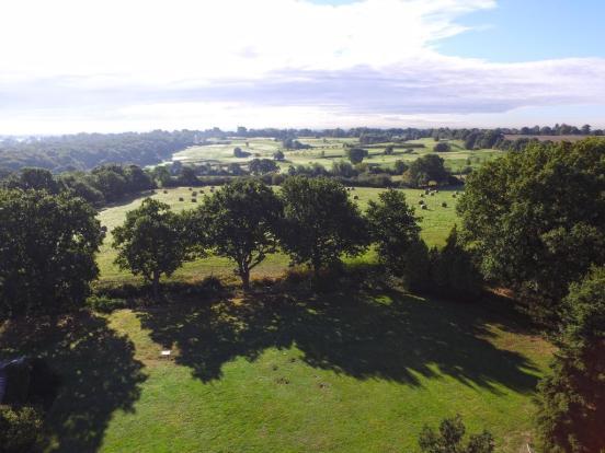Aerial View Rear
