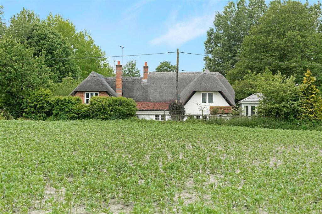 Rose Cottage field v