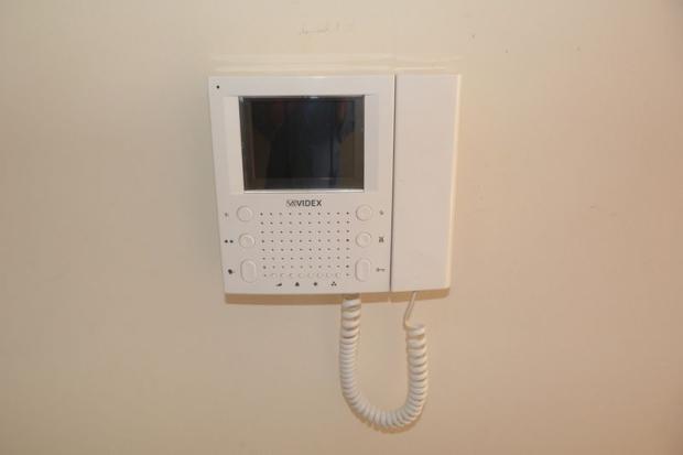 Video Entyrphone