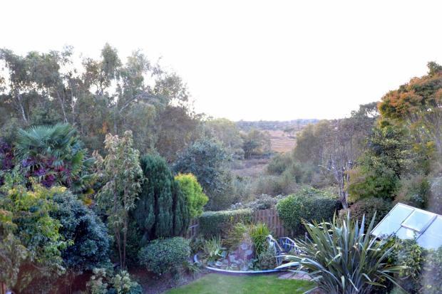 View across heathlan