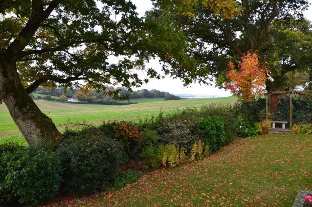 View (Autumn - Photo