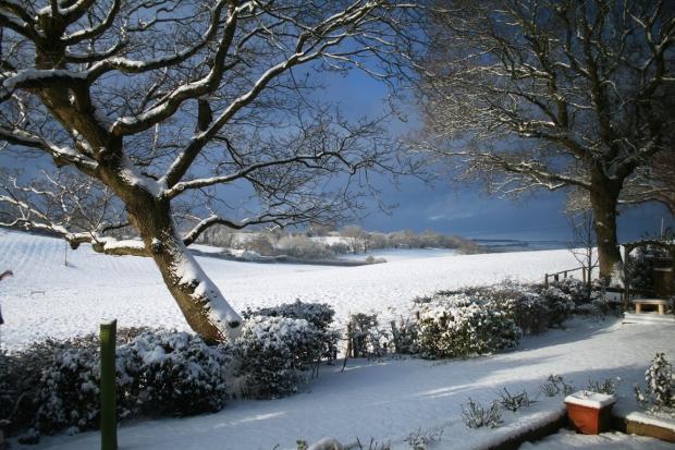 View (Winter - Photo