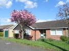 3 bed Detached Bungalow in Caws Avenue, Seaview...