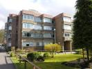 Flat to rent in Lethington Avenue...