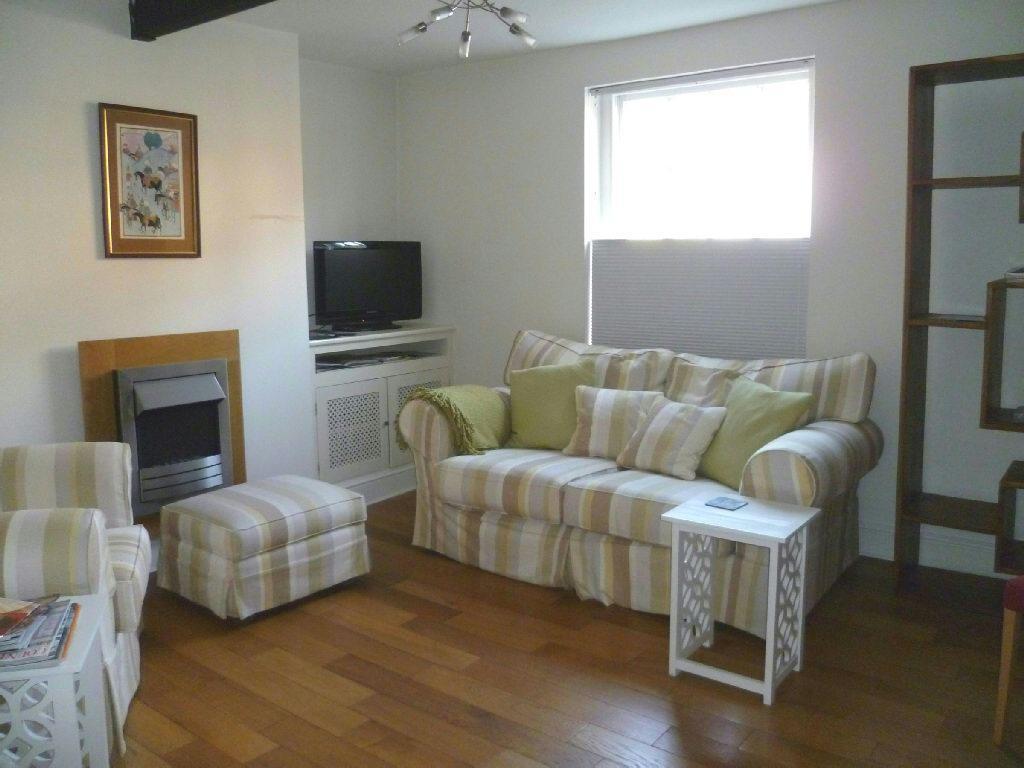 Living Room /Bedroom