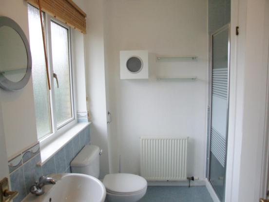 Bathroom Alt View 1