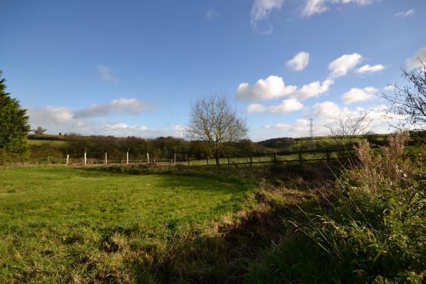 Surronding Field