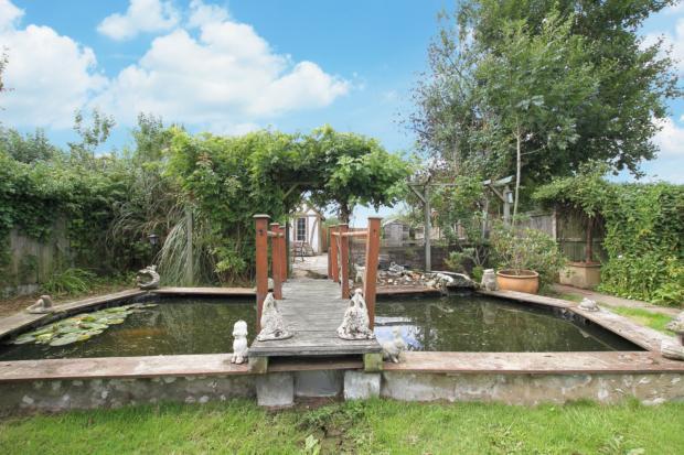 Gorse Lane garden (3)