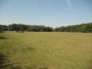 Land for sale in Ubbeston, Nr Halesworth