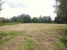 Land for sale in Great Bealings...