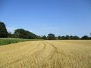 Land for sale in Framlingham