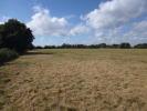 Cretingham Land for sale