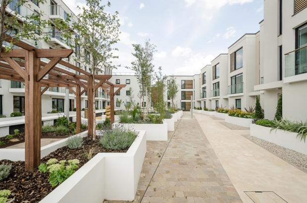 Mulberry-Mews004