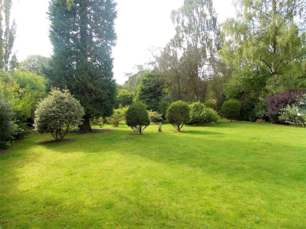 Rear Garden View