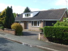 Detached Bungalow to rent in Norlands, Ashton Road...