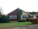 Detached Bungalow to rent in Gorse Way, Hartley...