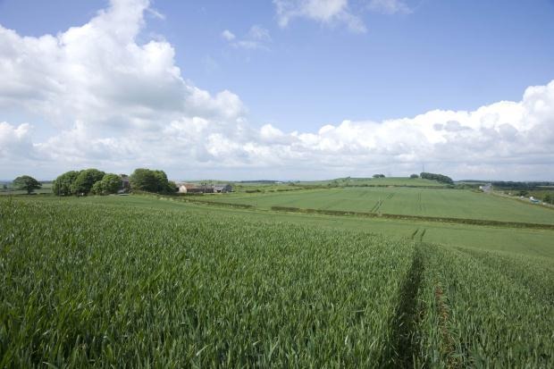 Arable Land East
