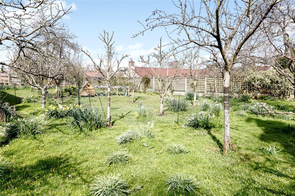 Orchard