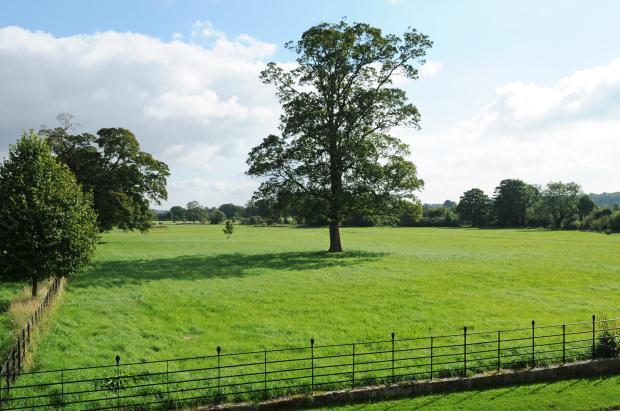 Views Over Parkland