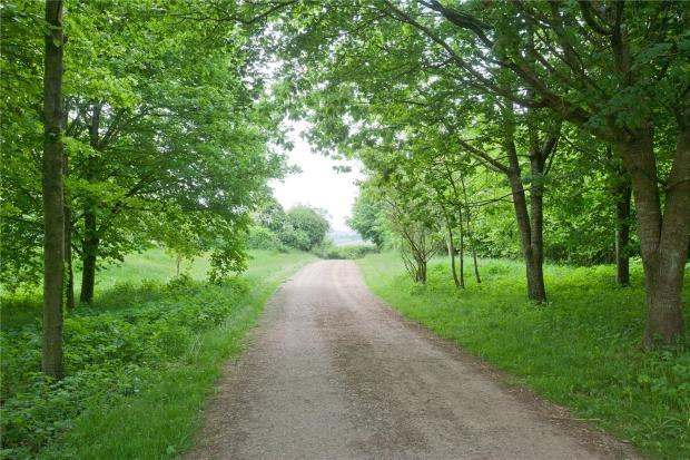 Drivewaye