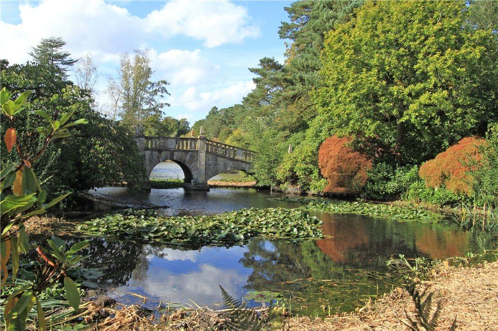 Bridge Across Lake