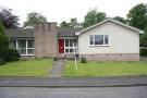 Detached Bungalow in 3 The Beeches...