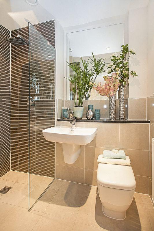 Show home bathroom pictures