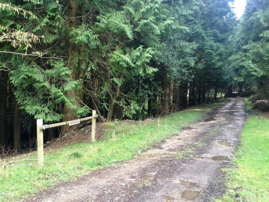 Farway Devon Property For Sale