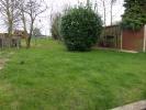 Rear garden (photo3)