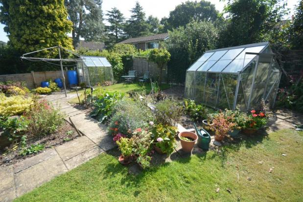 Garden with greenhouses