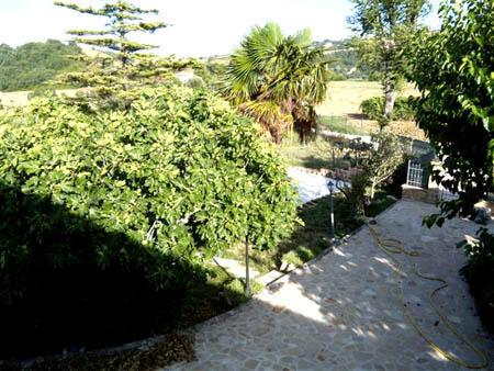 The entrance path