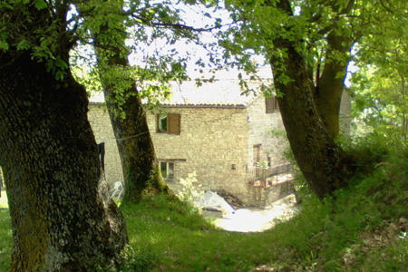 Farmhouse Main