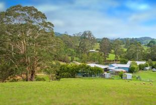 property for sale in Dorrigo, NSW