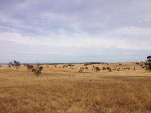 Farm House for sale in SA, Rockleigh