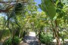 Tropical gardens