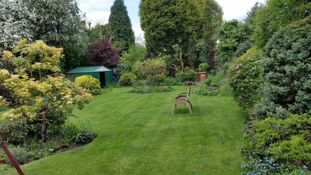 rear garden new.jpg