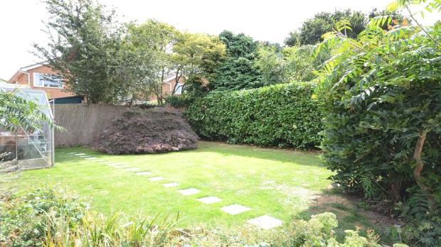 Garden 3