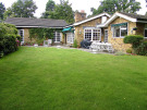 4 bed Detached Bungalow in Warren Cutting...