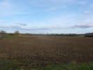 Rettendon Common Farm Land for sale
