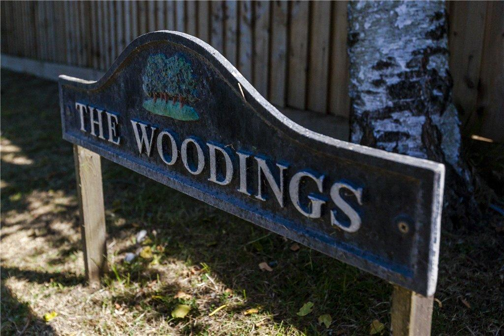 The Woodings