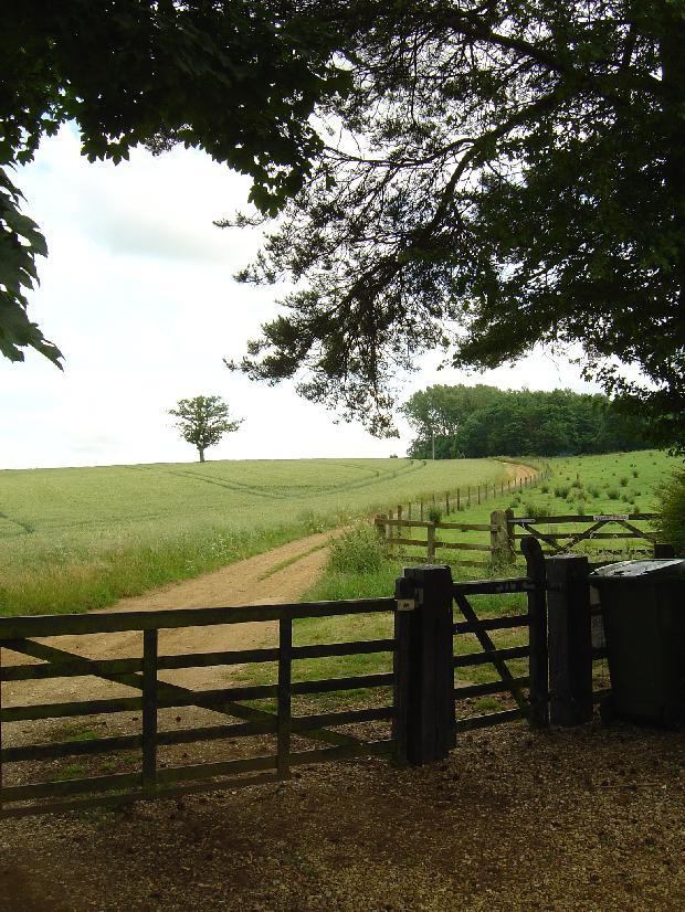 view up kennel lane from entrance gate
