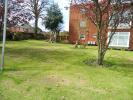 Communal Gardens.