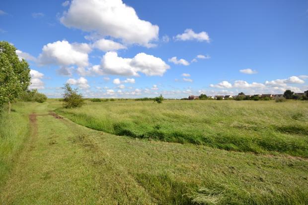 Nearby Field