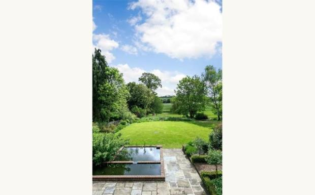 Garden / View