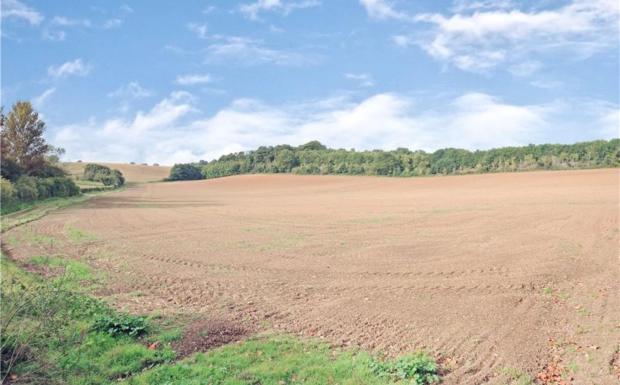 Adjacent Countryside