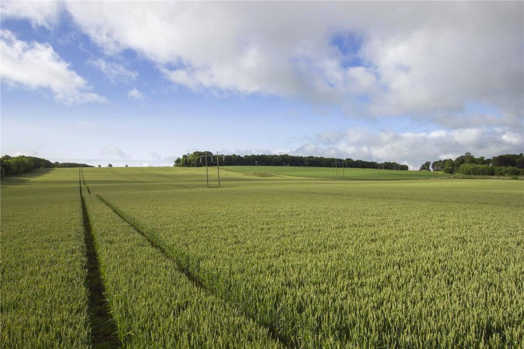 comparison between comercial arable farming in Thirty farmers each involved in commercial organic and conventional vegetable   farming in comparison to conventional farming (table 1)  organic and  conventional agriculture²the case of arable farms in germany.